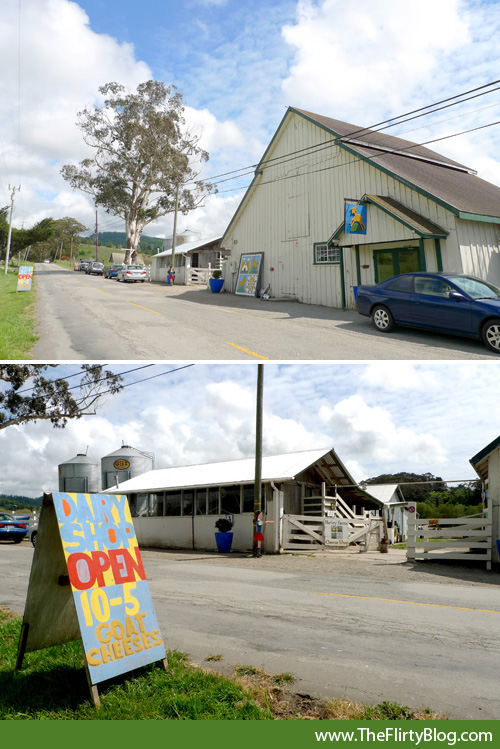 harley-farms-barn-store-pescadero