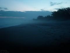 Dark Beach (#Tiago) Tags: floripa sunset brazil sky mist tree sol praia beach sc brasil dark do florianópolis noite arvore arvores ceu por moçambique florianpolis tiagorcosta