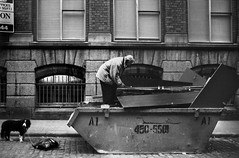 Searching through Skip, off Dame Street, Dublin