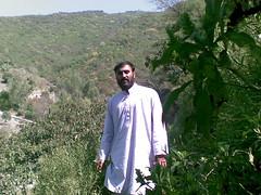 shakar Dara (20) (Afghanhood) Tags:
