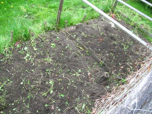 Garden Post Weeding