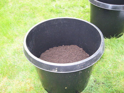 Tomato Planting Pot with Organic Compost