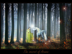 The secret of Arwen ( Damona-Art ..`..`) Tags: morning trees light nature fairytale photoshop elfs woods nikon raw lotr fantasy unicorn arwen forests secrets tolkien jrrtolkien middleearth evenstar d300 photomatix bookofsecrets asfaloth thesecretlifeoftrees