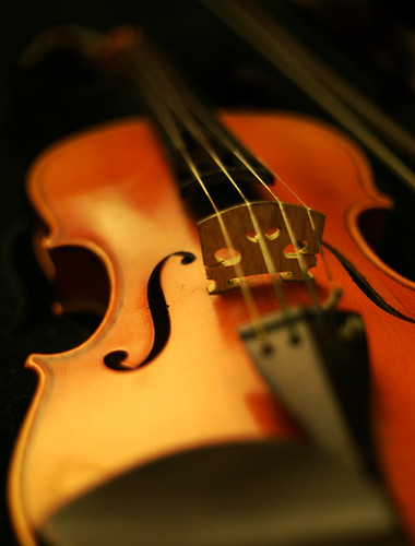 My Old Violin (by discopalace)