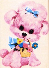 pink dog (lorryx3) Tags: pink dog flower bow bigeye babypink