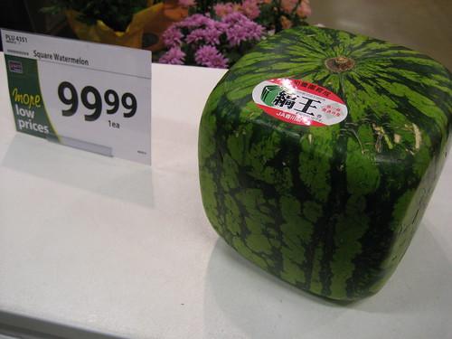 cost of watermelon