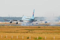 Korean Air Cargo Boeing 747-4B5 (F) HL7466 (21139) (Thomas Becker) Tags: lines cn plane germany airplane geotagged deutschland airport nikon hessen frankfurt aircraft air cargo korean f 400 boeing d200 tamron flugzeug 747 spotting fra kal freighter b747 ln 200500 fraport 744 rheinmain eddf 280901 1286 74f 26413 skyteam aerotagged luftfahrzeug aero:man=boeing aero:series=400 aero:model=747 aero:airport=eddf aero:special=f aero:airline=kal 080801 aviationphoto 4b5 hl7466 190901 geo:lat=50039323 geo:lon=8596877 aero:tail=hl7466