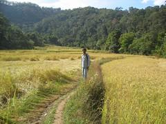middle of 3 hills (Sushrut's) Tags: trip madikeri my