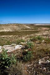 Outback Australia (C) 2008