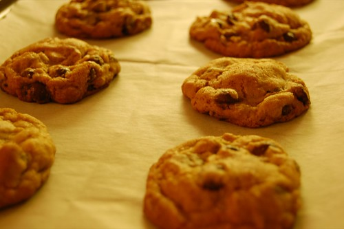 32-hour cookies