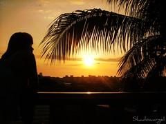 Sueos con el atardecer (Shadowargel) Tags: naturaleza luz atardecer playa momentos guaira