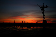 Crucifixion on the Bayou (Universal Stopping Point) Tags: sunset tree silhouette dead louisiana colorful cross bayou swamp crucifix prairieville alligatorbayou otherwiseunaltered whitelevelsslightlyupped