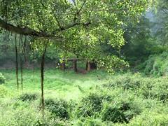 Fort couryard (chatts) Tags: camping trekking hill monolith chatts savandurg ramanagaram 12919654n77292881e