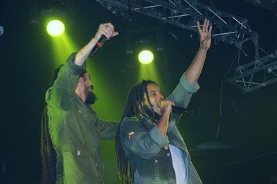 Marley Boys