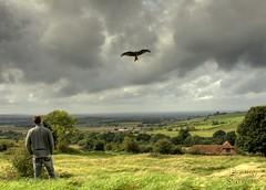 Lynyrd Skynyrd-Free bird (Uncle Berty) Tags: uk england berty brill bucks hdr smalls hp18 robfurminger