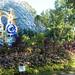 Botanical Gardens and Zoo 036