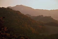 la valle (francesca sara) Tags: autumn party fall october wine valle redwine festa autunno challenge sagra vino emiliaromagna romagna ottobre castagna vinorosso concorso e45 cagnina sarsina sagradellacastagna ranchio