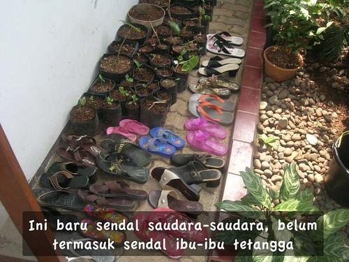 Sendal