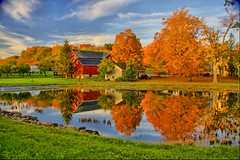 Elderberry Pond (Matt Champlin) Tags: orange reflection fall leaves sunrise canon pond autum country auburn foliage hdr countryroads countrylandscapes colorphotoaward superaplus aplusphoto eso40d centralnewyorkfallfoliage upstatenewyorkfallfoliage elderberrypond