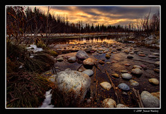 A Golden Morning (James Neeley) Tags: nature sunrise landscape nikon searchthebest hdr grandtetonnationalpark d300 gtnp 5xp mywinners jamesneeley