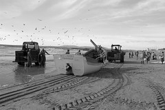 Racing on the beach (Daniel Kulinski) Tags: ocean sea sky people blackandwhite bw food white tractor black color cars me portugal water colors monochrome birds animal sepia clouds digital self work myself landscape pull boat fly photo interesting fishing sand europe flickr heaven factory fishermen daniel gray captured picture trace samsung shore send pro push machines draw did 1977 2008 stay qp 815 pro815 samsungpro815 kuliński ilustrar ilustrarportugal didmyself ccbync
