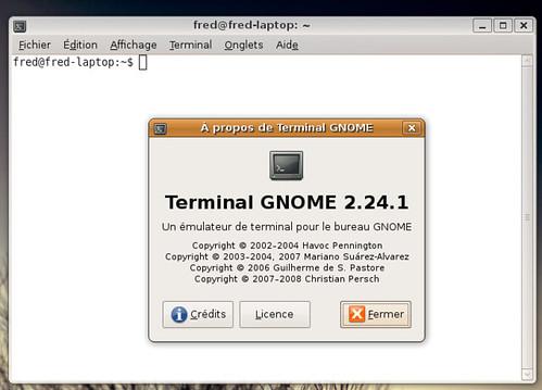 Gnome Terminal 2.24.1