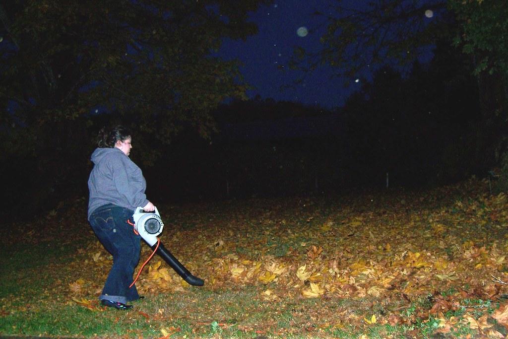 45/365 Leaf Blower
