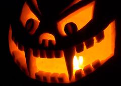 The Cultivar Cat (Emery O) Tags: orange halloween gourds cat pumpkin cool october pumpkins bat carving pumpkincarving squash fangs cultivar colorfulworld porchpumpkins squashlike coolpumpkins thecultivarcat