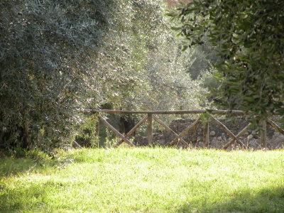 Adrian's Villa - Tivoli (Italy)