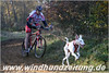 Podenco_HD088058_1000pxWHZ