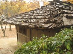 IMG_0542 (blue.tengu) Tags: korea seoul folkvillage suwon