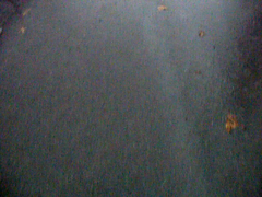 20081125.WaterRunningDownhill (rlg) Tags: november water video running avi 25 tuesday 2008 1125 fpr 200811 20081125 olympussp570uz 11252008
