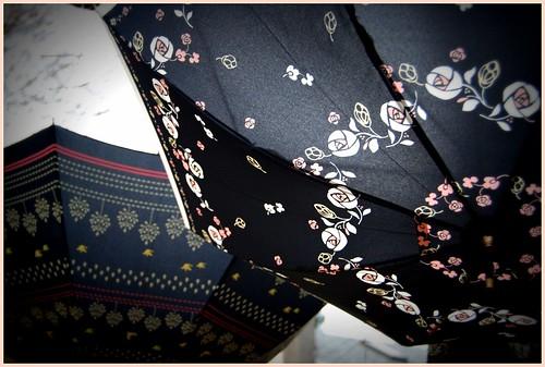 new umbrellas 8