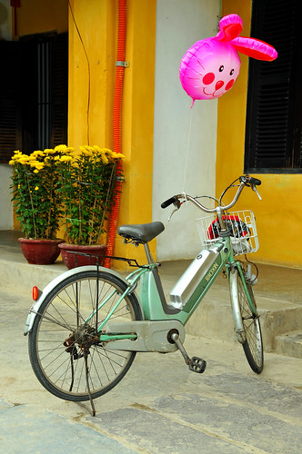 world city trip travel pink flower heritage bicycle electric site ancient nikon asia tour ballon free tourist vietnam hoian dennis danang sites globus d300 iamcanadian thubonriver worldtravels dennisjarvis archer10 dennisgjarvis
