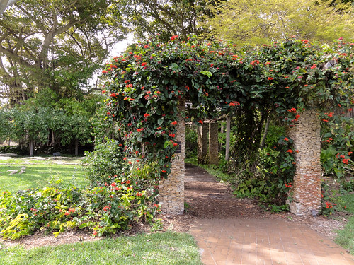 Vine pergola at Fairchild Tropical Botanic Garden