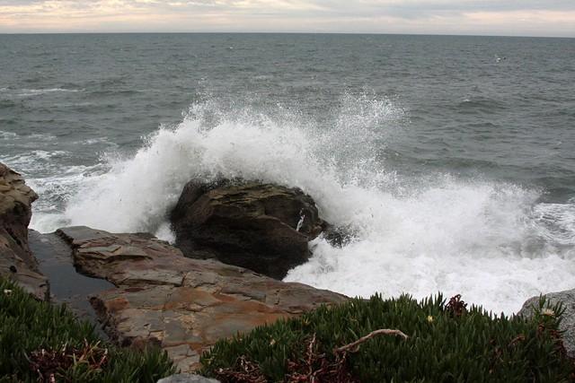 Ocean, Santa Cruz