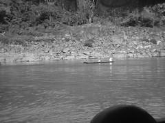 Image740 (hingus2000) Tags: cruise shozu river laos mekong luangprabang pdr slowboat huayxai pakbeng chiangkhong