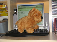 000167 - Peluche (M.Peinado) Tags: animal canon ordenador powershot perro perros animales sharpei juguete 2007 peluche a700 ccby canonpowershota700 15032007 marzode2007