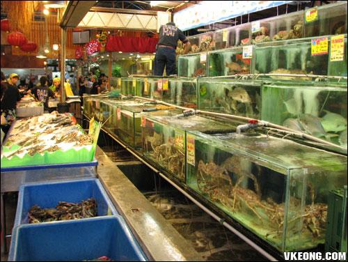 bali hai aquariums