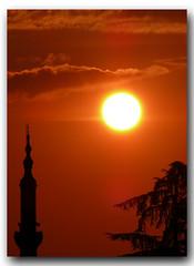 sun,tree & minaret