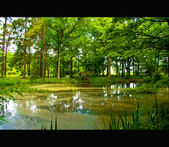 Around Cernay (Megara Liancourt) Tags: france countryside yvelines naturesfinest cernay golddragon sonyalpha100 abigfave platinumphoto anawesomeshot superbmasterpiece diamondclassphotographer flickrdiamond excellentphotographerawards theunforgettablepictures colourartaward platinumheartaward theperfectphotographer