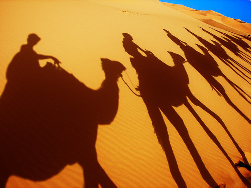 Camel caravan shadow