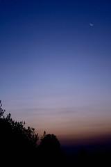 New Moon Dawn (Neville_S) Tags: blue trees sky orange moon black nature beautiful beauty silhouette sunrise canon stars 350d dawn amazing fantastic catchycolours peaceful canon350d newmoon excapture nevillesukhiaphotography