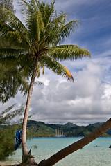 Motu Mahaea Viewpoint (SunCat) Tags: travel cruise vacation star polynesia islands flyer all sailing ship pacific bare south southpacific tall tallship society 2008 motu clippers necessities starflyer tahaa societyislands barenecessities starclippers mahaea