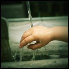 manina bagnata (alebibbo) Tags: travel 350d hand emilia mano bimbo acqua fontana reggio goccia liquido eow manina masterhand