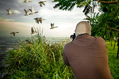 "Hunting a photo. (Angel ""dimen"" Gutirrez) Tags: nature canon duck venezuela hunting zulia patos cazando cabimas ojeda"