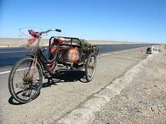 Roadside scrounger near Guazhou, Gansu Province, China
