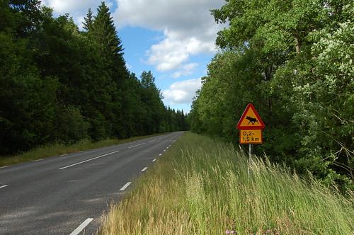スウェーデン名物(?)、ヘラジカ注意看板