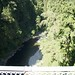 Capilano Suspension Bridge_4