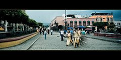 A day in Tequila (Luis Montemayor) Tags: street people girl birds mexico calle chica gente sunday jalisco aves tequila domingo myfavs